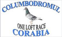 Columbodromul international Corabia