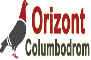 Columbodromul international ORIZONT - Baicoi, Prahova